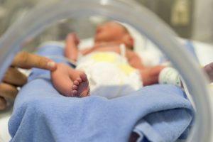 Útero artificial permitirá el desarrollo de bebés prematuros