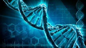 Desarrollan software que podría ayudar a diagnosticar enfermedades genéticas