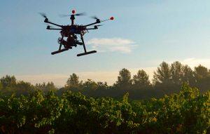 Un nuevo sistema de drones sembrará árboles para combatir la deforestación