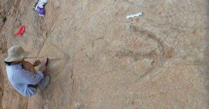 «Parque Jurásico» no se equivocaba: había dinosaurios gigantes antes del Cretácico