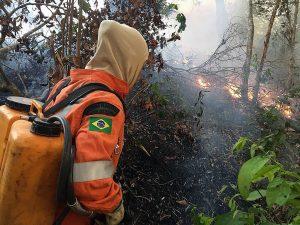 El mundo exige salvar la Amazonía, «pulmón del planeta» asfixiado en llamas