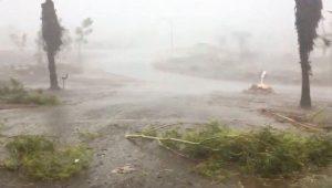 Australia espera que nuevas lluvias pongan fin a crisis de incendios en los próximos días