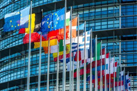 #Venezuela   La UE retirará su misión de observación electoral si cambian las condiciones