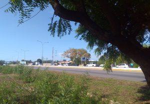Largas colas en Ciudad Ojeda para abastecerse de gasolina