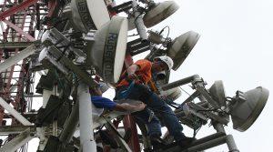 Movilnet trabaja en todo el territorio nacional para optimizar sus servicios
