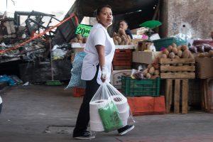 Las bolsas plásticas, un impacto ambiental sin control