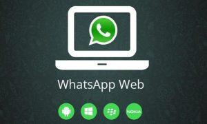 No sabes cómo realizar viodeollamadas desde Whatsapp web, aquí te enseñamos