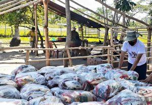 Beneficiadas 2.600 familias indígenas con la entrega de combos de Alimentación