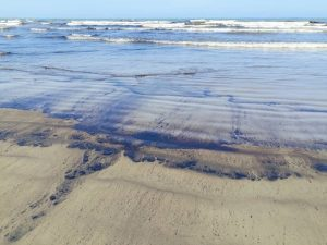 ¡AL FIN! Gobierno Nacional comienza limpieza de derrame de petróleo en la costa de Falcón