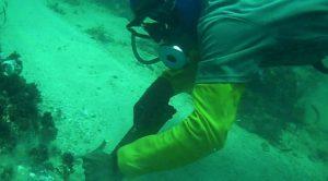 Trabajos para recuperar tubería submarina Chacopata-Coche en Nueva Esparta  continúan su curso