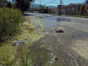 Tres meses cumplen vecinos de la Esmeralda en Valencia con un bote de aguas blancas
