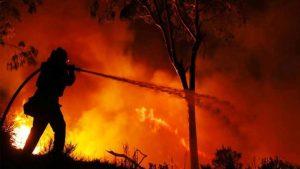 Bolivia declara «desastre» por incendios forestales y abre las puertas a ayuda internacional