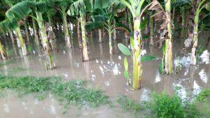 Más de tres mil familias y 10 mil hectáreas afectadas por lluvias en el Sur del Lago de Maracaibo