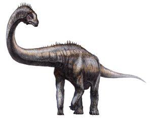 Científicos descubren huellas de dinosaurios en región china del Tíbet